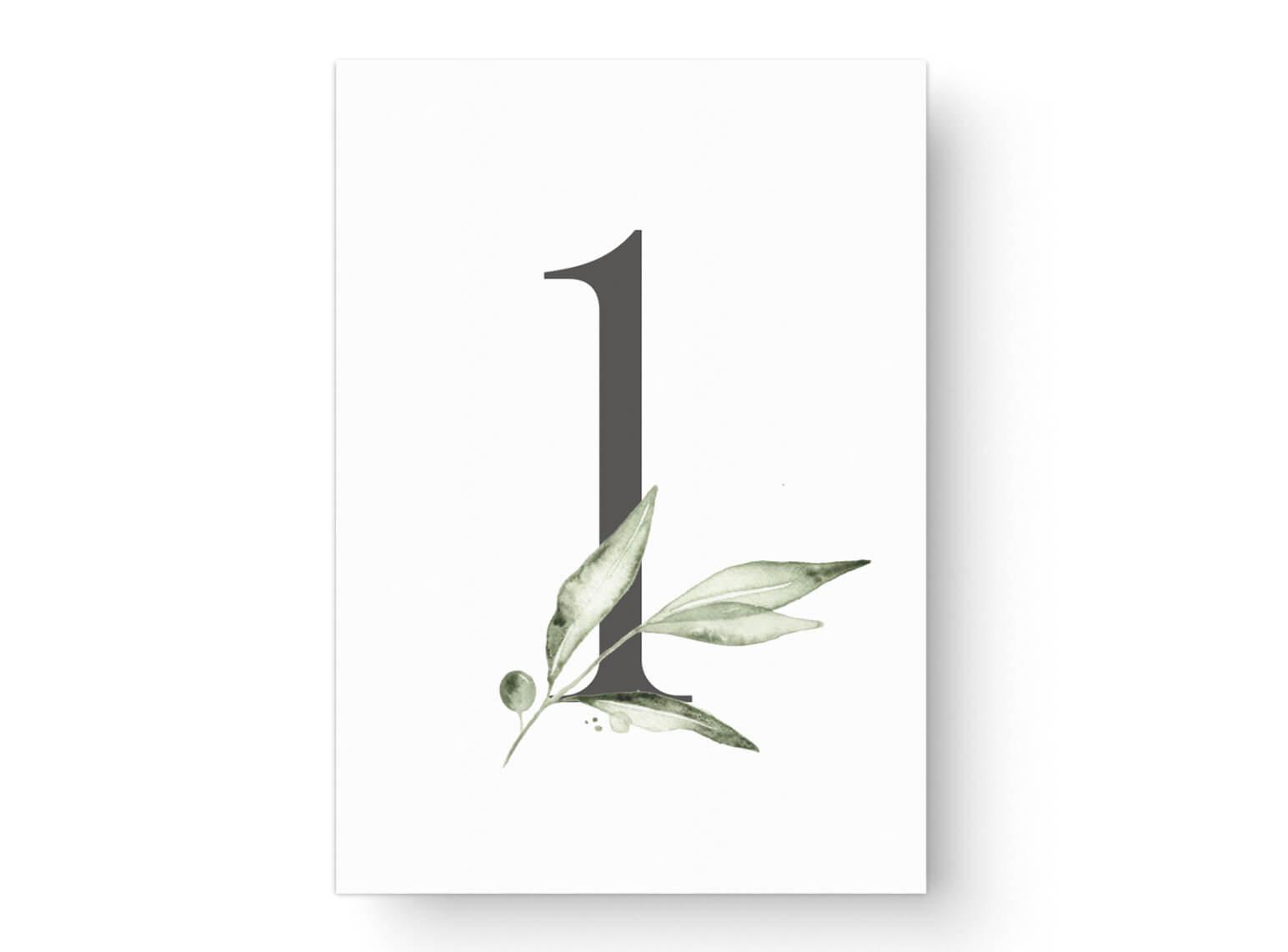 hochzeit-tischnummer-dina-6-olive-zweig-aquarell-gruen-grau-1-MP0008-4.1.1